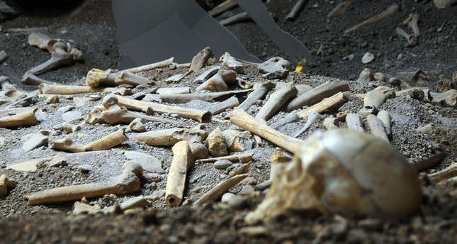 Direkli Mağarası'ndaki kazılarda ortaya çıkan kemikler, Anadolu insanının gen yapısına ilişkin ipuçları verecek. (İsmail Hakkı Demir - Anadolu Ajansı)