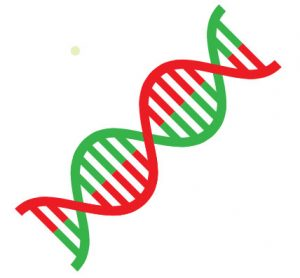 Ductless Fume Hood DNA